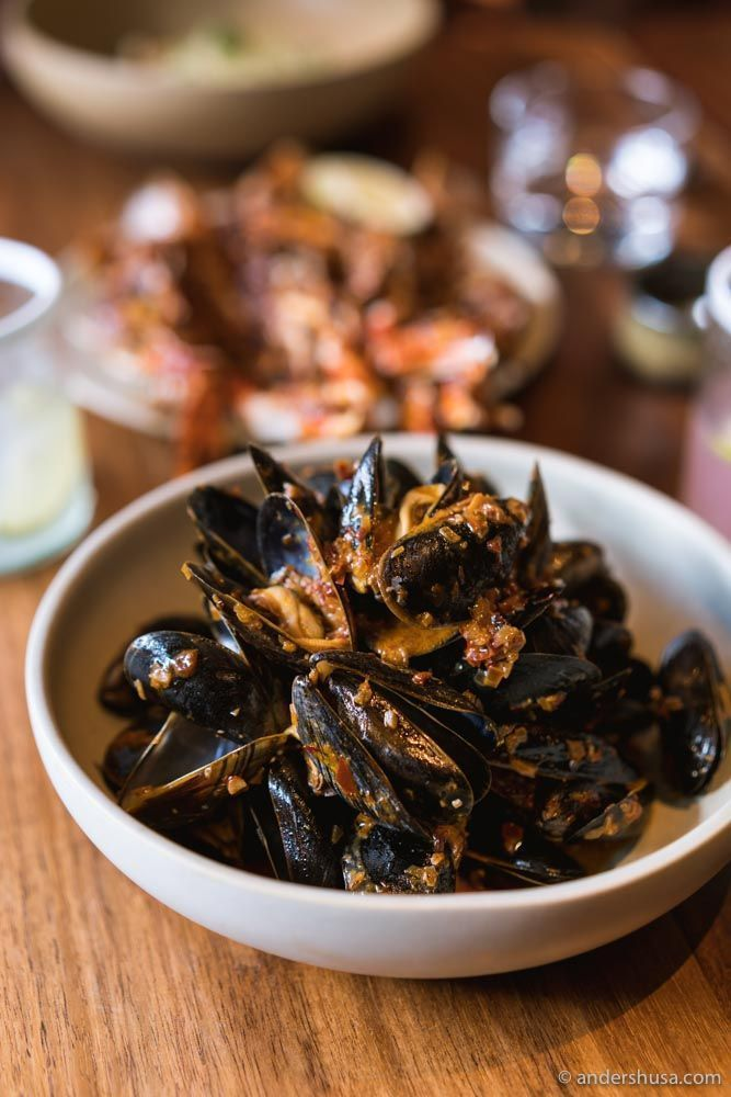 Spicy blue mussels with chipotle salsa, cream, and butter.