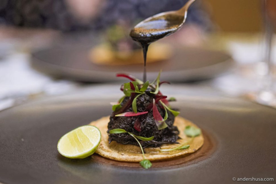 """Panucho with braised oxtail in a black """"recado"""" sauce from oven-baked onions and fried almond purée."""