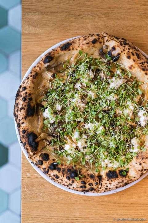 Surt's sourdough pizza with oyster mushrooms, buffalo mozzarella, garlic, and arugula.