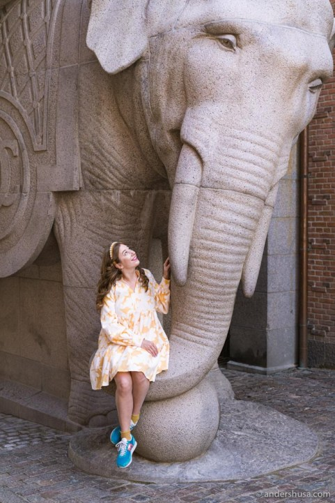 Be sure to say hello to the elephants!