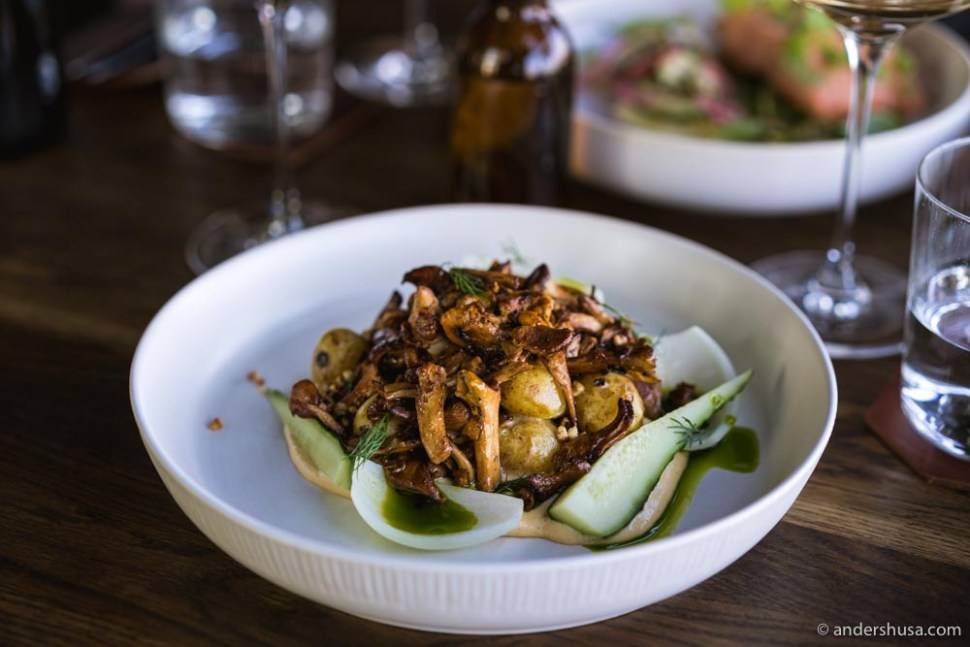 Our favorite dish – potatoes, chanterelles, hollandaise, salted cucumbers, and onion from the compost machine.