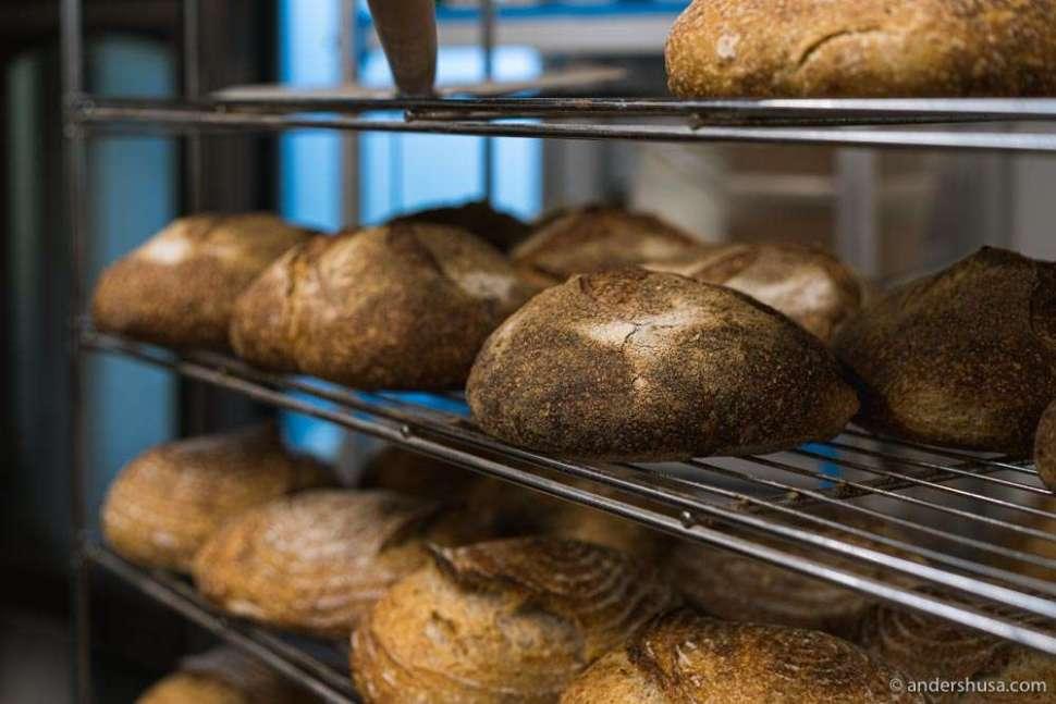 The sourdough bakery Kotzebue has expanded into a full restaurant: Tsunft.