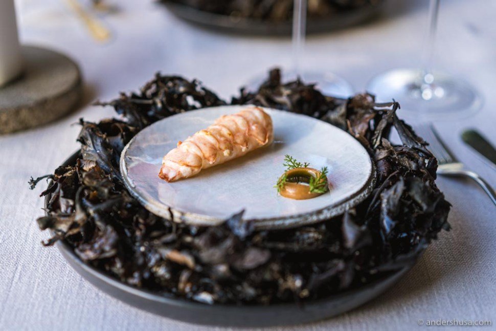 We predicted one star for restaurant ÄNG – and they got it!