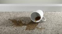 Why Are Coffee Stains so Difficult to Remove from Carpets ...