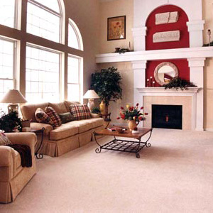 2015_WholeHouseCarpetCleaningSpecial[1]