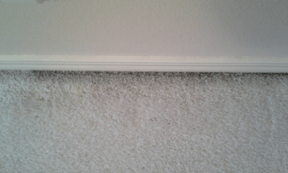 why-do-i-have-gray-lines-on-my-carpet