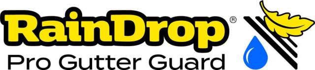 Raindrop_logo_4C