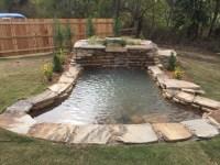 Swimming Ponds - Anderson Pond Design