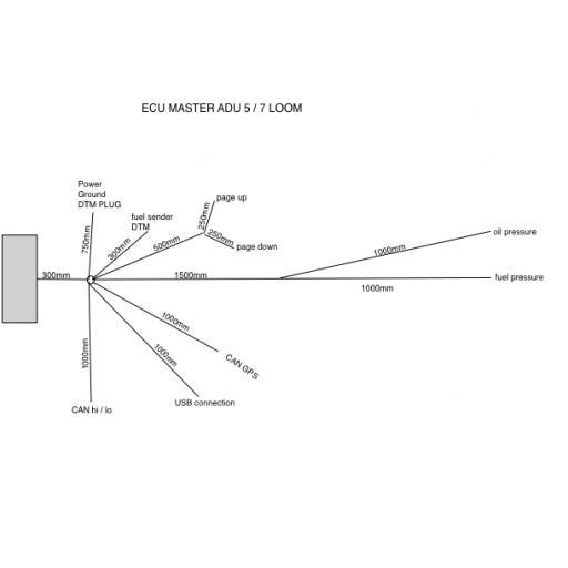 ECU-Master ADU Wiring loom / harness