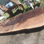 """#501. Redwood, 48""""W x 148""""L x 3.5""""T. Call for pricing."""