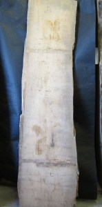 "#59. Monterey Cypress (18""W x 96""L x 3.75""T) $485"