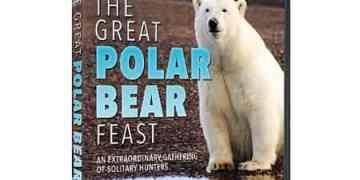 GREAT POLAR BEAR FEST, THE 47