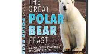 GREAT POLAR BEAR FEST, THE 29