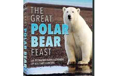 GREAT POLAR BEAR FEST, THE 3