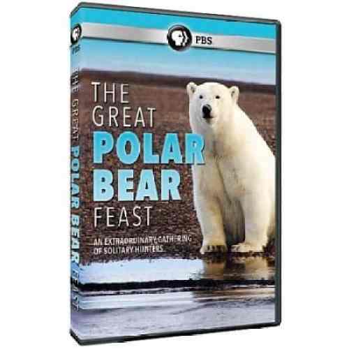 GREAT POLAR BEAR FEST, THE
