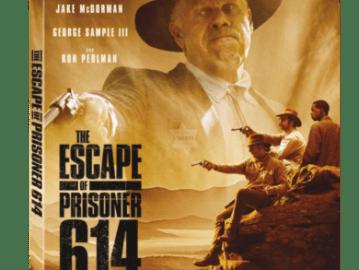 ESCAPE OF PRISONER 614, THE 51