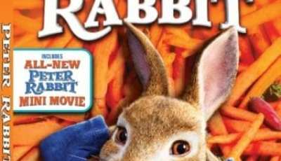 PETER RABBIT Available on Digital 4/20, 4K Ultra HD, Blu-ray and DVD 5/1 9