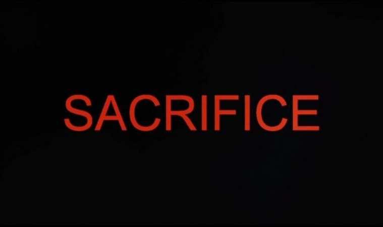 AMERICAN GUINEA PIG: SACRIFICE 3