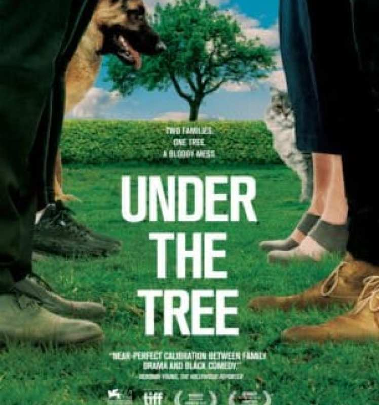 Under The Tree shows how Iceland handles first world drama