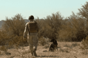 Canine Soldiers review: PTSD for Puppers 8