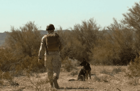 Canine Soldiers review: PTSD for Puppers 21