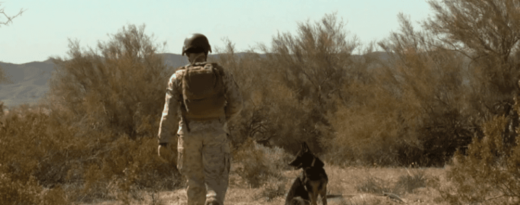 Canine Soldiers review: PTSD for Puppers 3