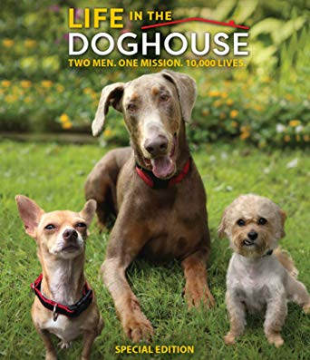 Life in the Doghouse [Review] 1