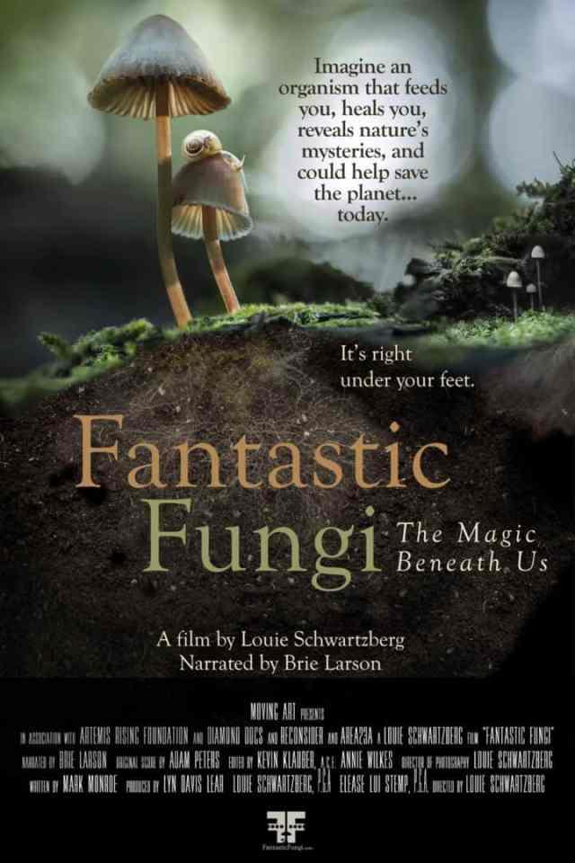 Fantastic Fungi and Promare land new trailers! 2