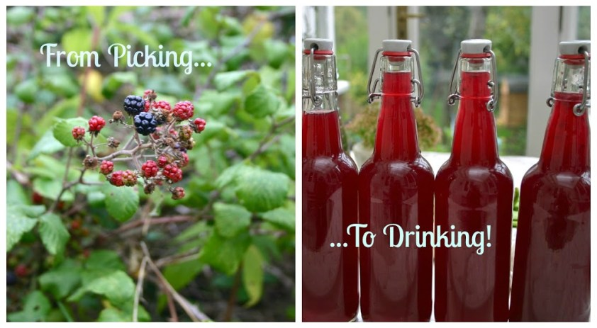 How I Made Wild Blackberry Cider - And Here We Are