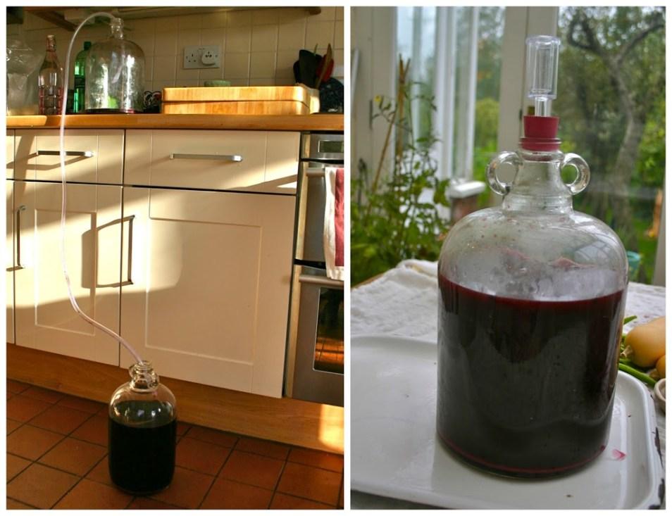 Making Elderberry Wine