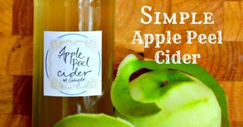 Apple Peel Cider