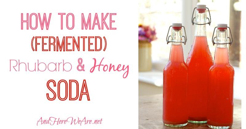 How to Make Fermented Rhubarb & Honey Soda