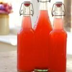 Making Rhubarb Soda at Home