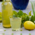 Making lemon leaf soda from And Here We Are