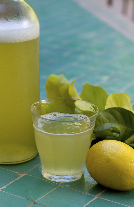 lemon leaf soda from And Here We Are