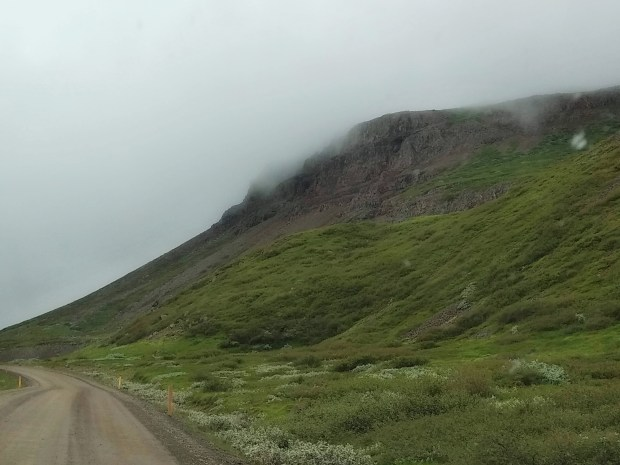 What I Didn't Expect When Driving in Iceland | Andiamo Aurora | This guide is the truth about some real experiences you will have when driving in Iceland. Resources included.
