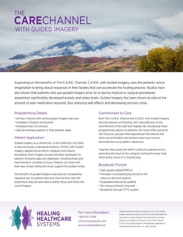 Healing Healthcare Systems Print - Andiamo Creative
