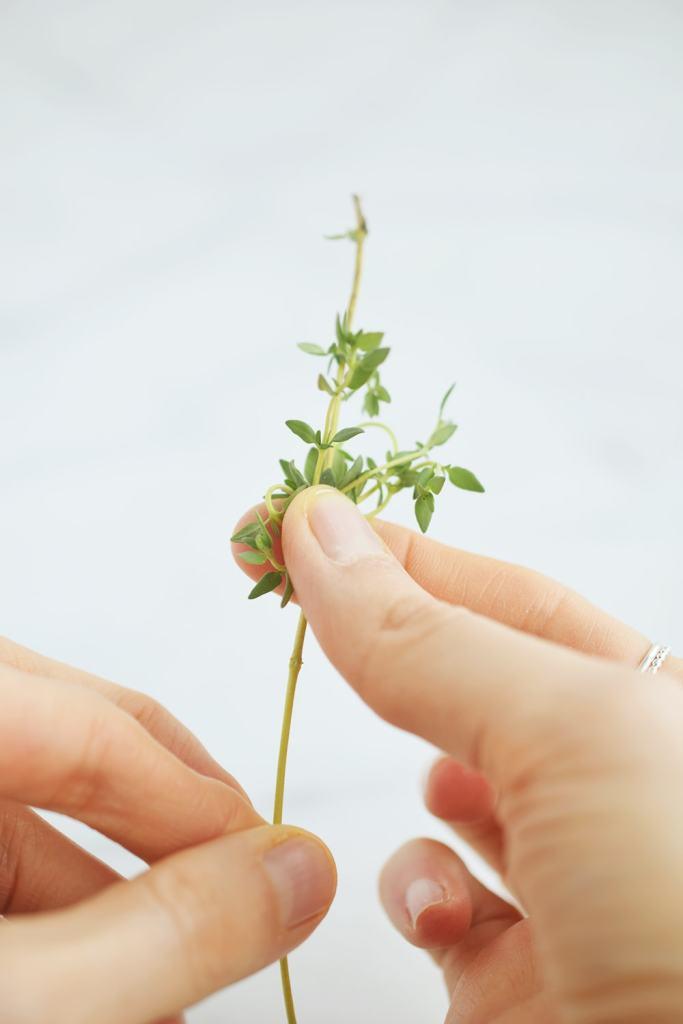 fingers destemming fresh thyme