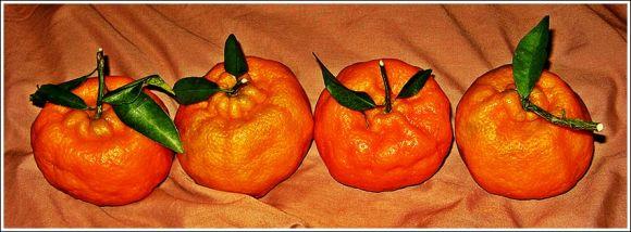 four_oranges