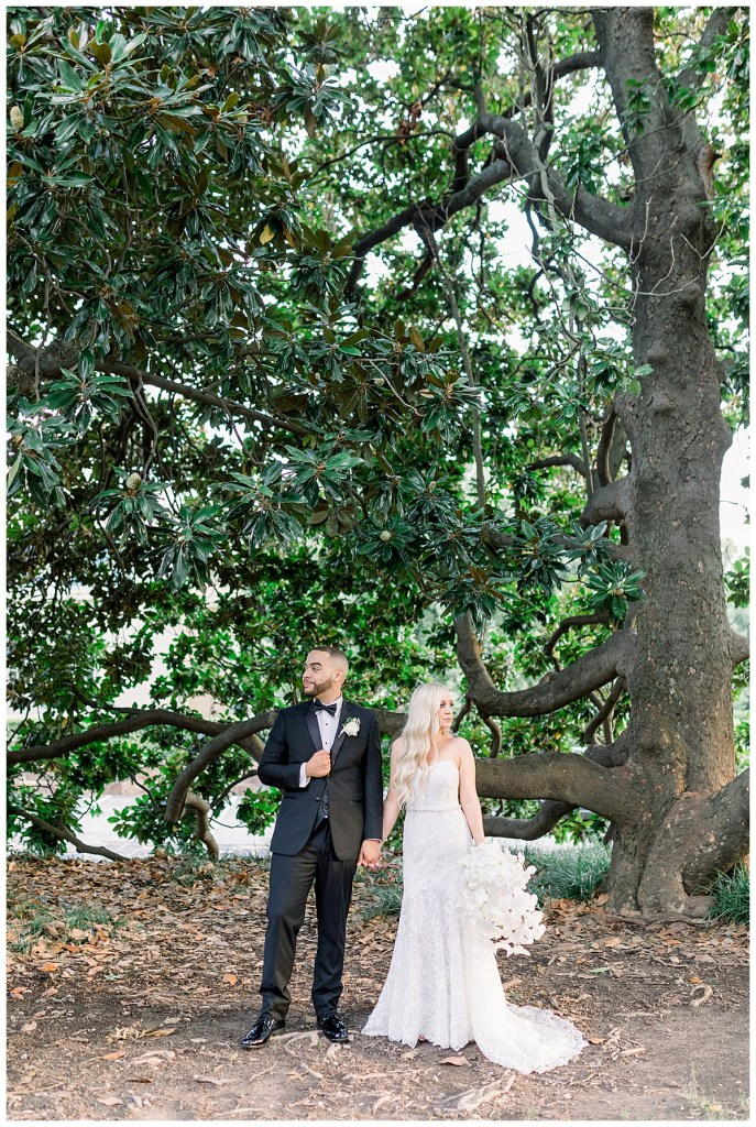 Bride and groom holding hands and looking away under huge tree| Tulsa wedding venue| Tree wedding| Tulsa & destination wedding photographer| Andi Bravo Photography