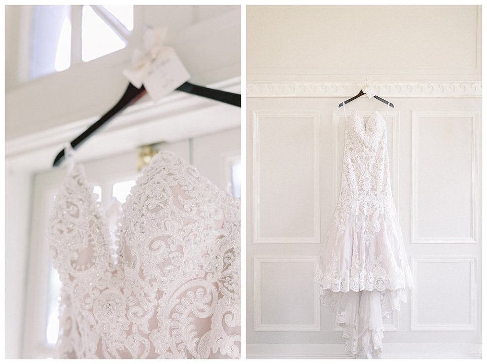 Champagne Lacy crystal trumpet wedding gown