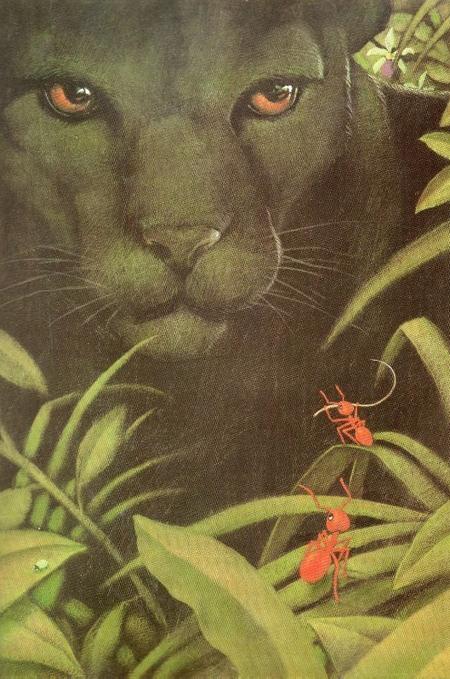 La Reine Des Fourmis A Disparu : reine, fourmis, disparu, Reine, Fourmis, Disparu, Instantané