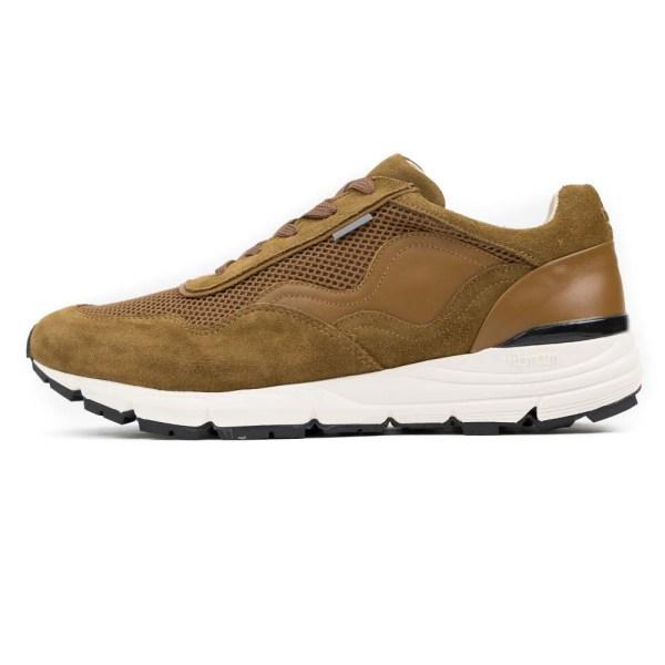 PREGIS Levy Leather Sneaker - Tan