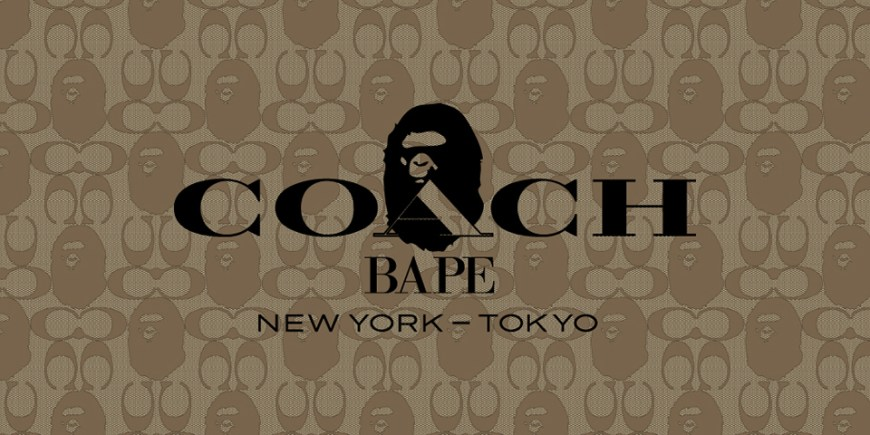 A BATHING APE X Coach blog