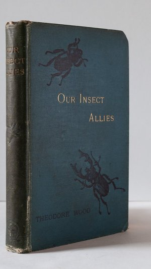 Our Insect Allies
