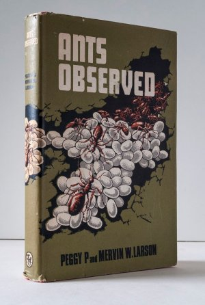 Ants Observed