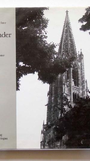 Klingender Stein Das Freiburger Munster