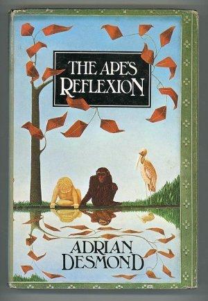The Ape's Reflexion