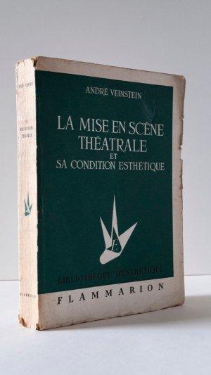 La Mise en Scène Théatrale et Sa Condition Esthétique