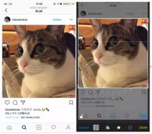 How to save Instagram photos on iPhone